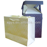 2013 Newly Designed Paper Party Bag Paper Bag Princess (XG-PB-314)