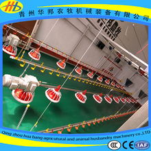 advanced automatic pan feeding breeding raising line system for white meat chicken