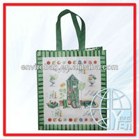 promotion NonWoven Lunch bags for ladies