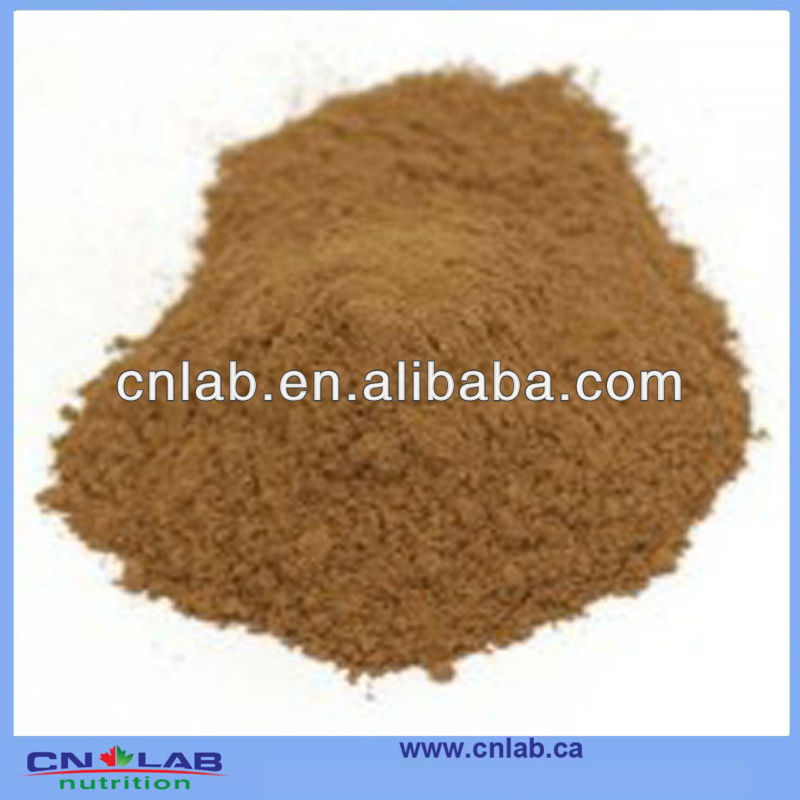 Factory price and natural Rhizoma coptidis Extract Powder