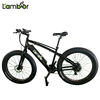 Black Colour Electric Fat Bike With