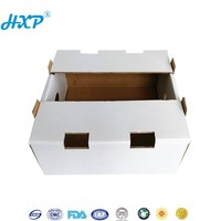 Custom Logo Cheap Corrugated Cardboard Fresh Avocado Box