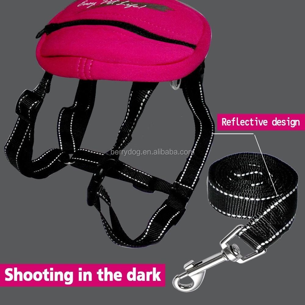 Portable Reflective Nylon Dog Harness Leash Set with Bag for Large Dogs