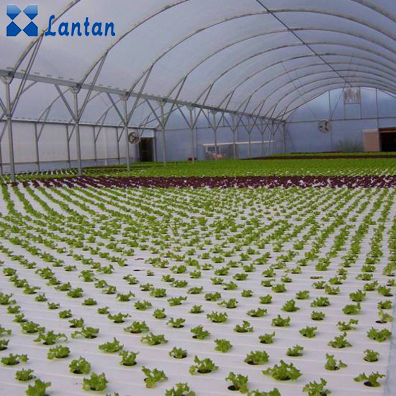Design PVC hydroponic nft system pipe for planting healthy vegetables