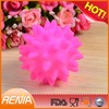 RENJIA Funny and cute silicone pet ball good for dog do play