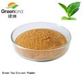 100% Pure Natural Green Tea Extract Powder with Tea Polyphenol