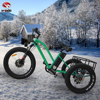 Aluminum Alloy 3 wheel e bike fat tire electric tricycle with suspension for sale