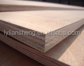 two times hot press Furniture plywood in china
