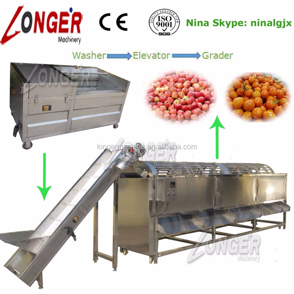 Factory Price Apple Peach Orange Washing Cleaning and Sorting Machine