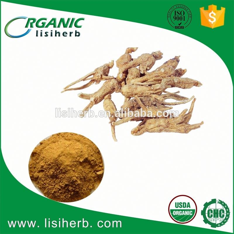 Factory supplying organic angelica sinensis p.e