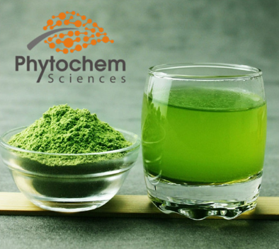 Strengthening the Immune System Wheatgrass Powder