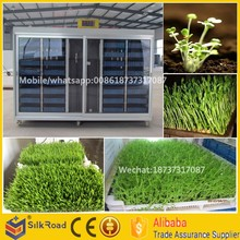 Factory supply Automatic soya bean sprout growing machine