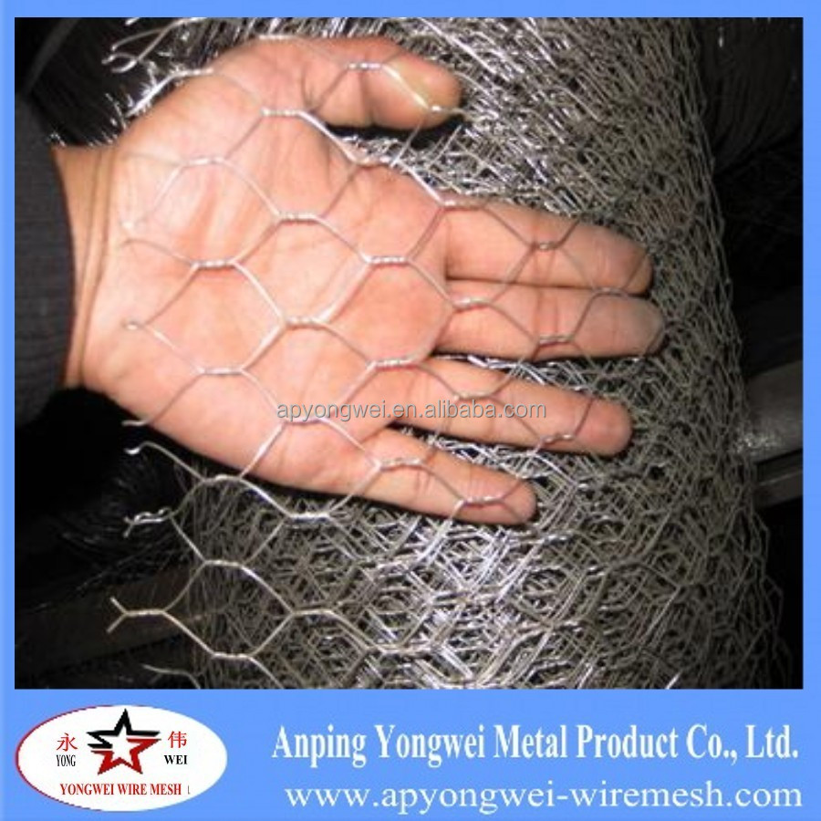 PVC coated Hexagonal Wire mesh Netting zoo bird cages