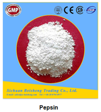 Pharmaceutical pepsin powder raw material for medicine production enzyme pepsin 1:15000