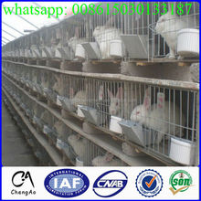 High quality chain link fence animal cheap rabbit cage