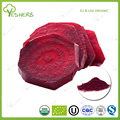 Factory organic beetroot juice powder