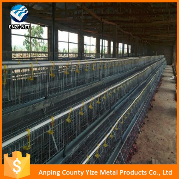 China wholesale chicken feeding system h type chicken battery cage for layers