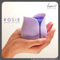 Rose Essential Oil Aroma Diffuser with LED