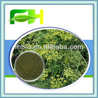 100% Natural Spices Dill Powder