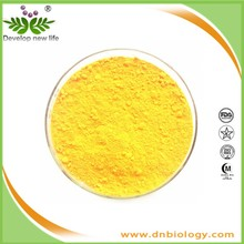 organic quercetin from onion extract quercetin powder