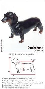 Perro maniqu dachshund buy product on - Maniqui de perro ...