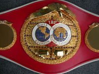 Championship belts / MMA / Boxing / Wrestling / Muay Thai / Kick Boxing / Medals