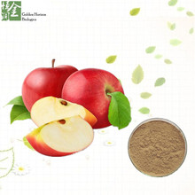 10:1 Apple Fruit Extract Apple Extract Apple Powder
