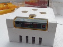 ZH-48 latest automatic used chicken egg incubator for sale,/chick brooder