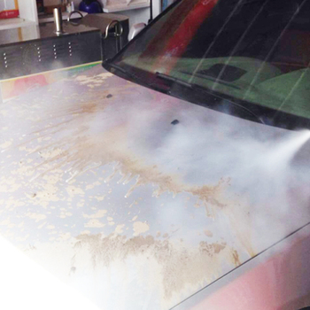 Car Exterior Steam Cleaning
