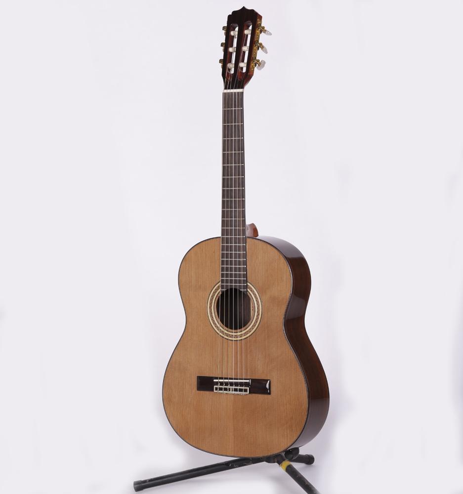 Meiyin Musical Instrument Guitar Ovation Classical Guitar ...