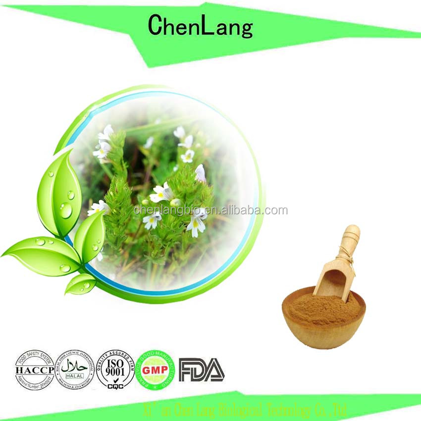 Rich Experience to Good for Eyes Produce Eyebright Extract Powder