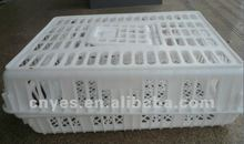 chicken transport cage / plastic cage/ poultry transport cage