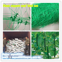 100% new virgin material plastic bop trellis netting/plant support netting with uv supplier / BOP Stretched Net