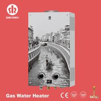 gas tankless water heater gas water heater JSD-RG3