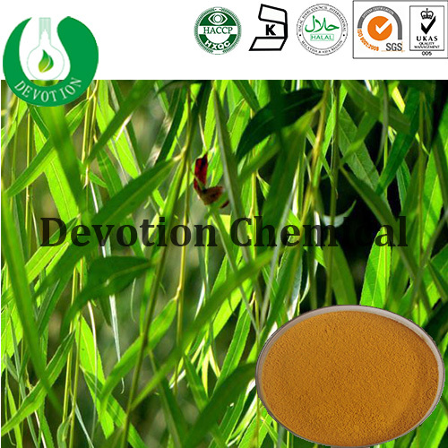 Organic White Willow Bark Extract Natural White Willow Bark Extract Salicin White Willow Bark Extract