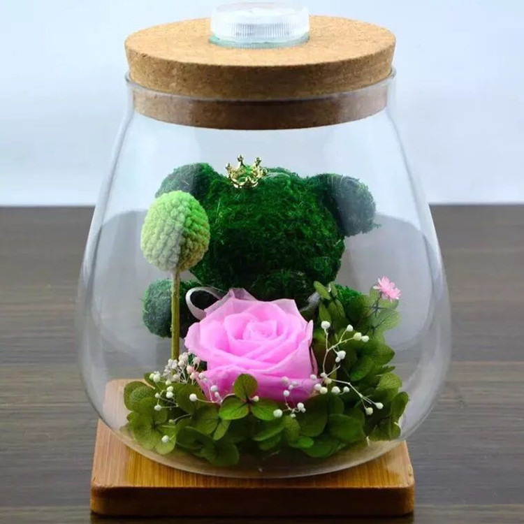 Borosilicate Glass Bottle Terrarium Of Air Plant Holder With Led