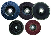 Abrasive Flap Disc for Paint Removal