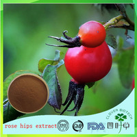 Hot sales Dahurian Rose fruit extract/Ascorbic Acid 10:1 20:1/Enhance Hypoxia endurance supply