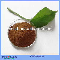 GMP,ISO,KOSHER Certified Plant Extract/Pygeum Africanum Extract