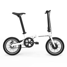 Newest Folding Electric Bicycle with Lithium Battery