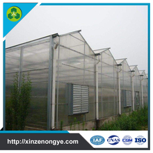 weifang polycarbonate polytunnel light deprivation greenhouse made in china
