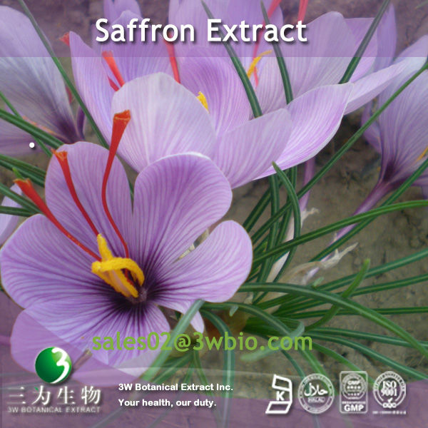 Safranal powder Extract from Saffron used for health