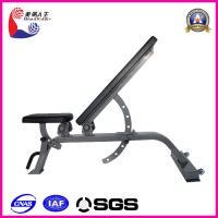 bench bodybuilding equipment