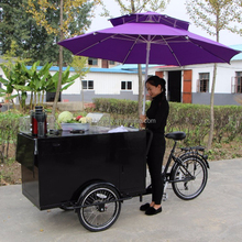 opened 3 wheel cargo tricycle front load-utility-type trike for vending