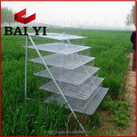 Metal Wire Mesh Layer Quail Broiler Cage For Sale( Now or Never )