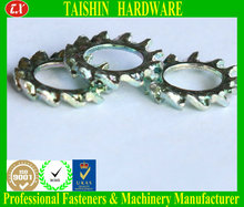 Factory Direct Zinc Plated External Tooth Washers
