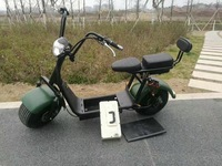 kick scooter 2000w carbon fiber harley electric scooter 1500 for rent with removable battery