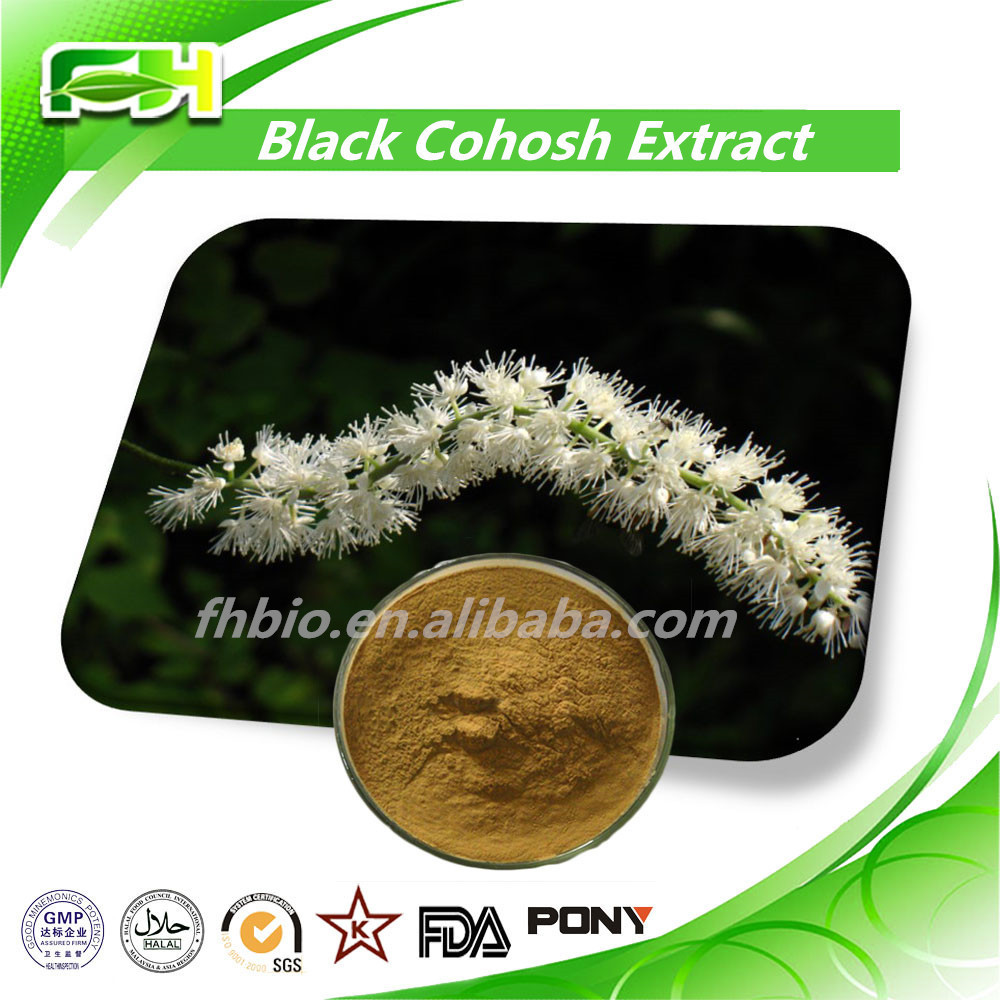 Wholesale 100% Natural High Purity Black Snake Root Extract