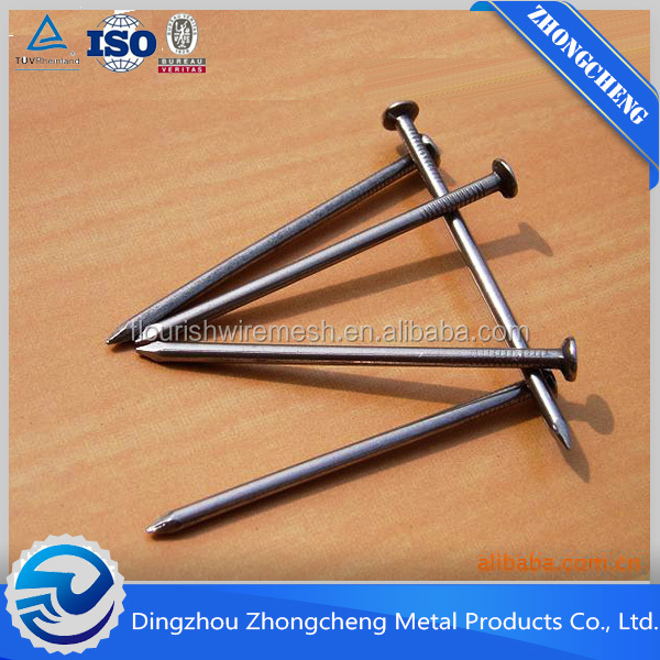 Factory common nail in dingzhou