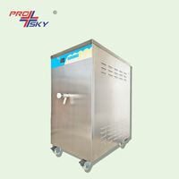 Mini Fresh Milk Dairy Pasteurizer Machine For Sale